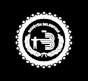 Bozuyük Büyükşehir Belediyesi'ne ait logo